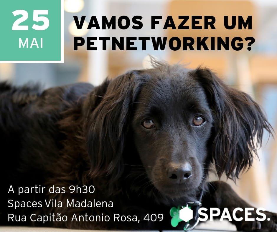 Petnetworking - Maio